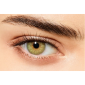 Lentilles de contact Desio Sensual Beauty Forest Green - 3 mois