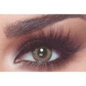 Bella One Day Platinum Gray - Lentilles de contact 1 Jour
