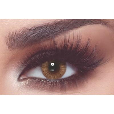 Bella One Day Almond Brown - Lentilles de contact 1 Jour