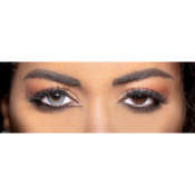 Lentilles de Contact Grises Obsession Paris Seduction Shadow - 3 Mois